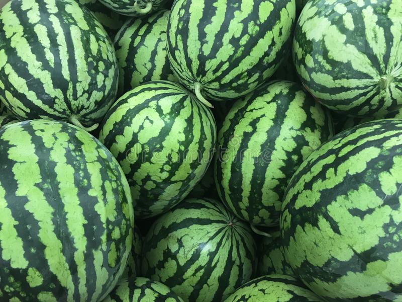 Many ripe green watermelons display on the market royalty free stock image