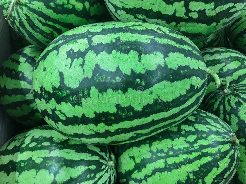Many ripe green watermelons display on the market stock photography