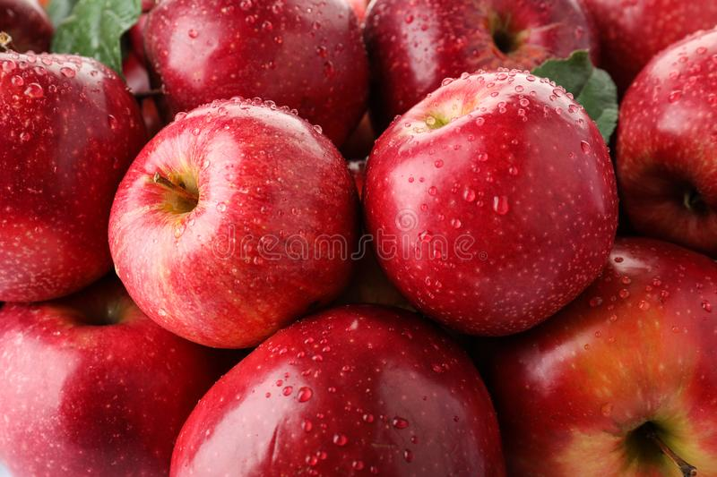 Many ripe juicy red apples covered with water drops. As background stock images