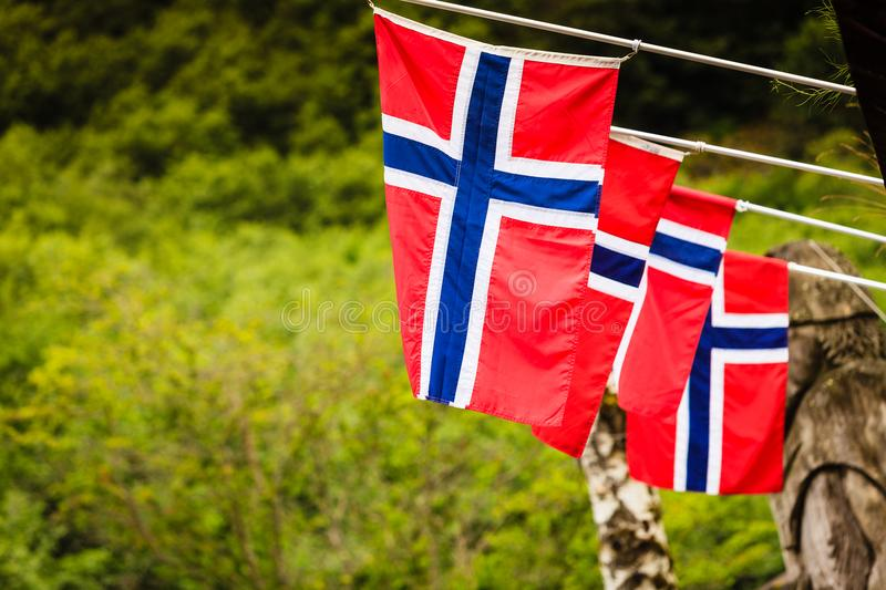 Many small Norway flags in row outdoor stock photography