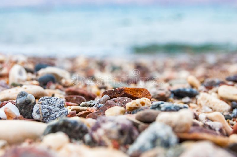Many small pebbles stones and corals on the Red Sea beach in Eilat. Israel royalty free stock photo