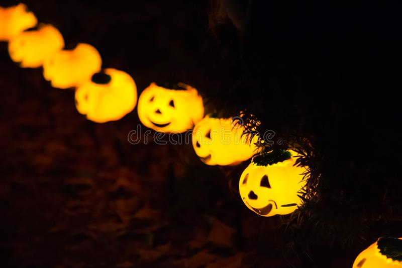 Many small pumpkins illuminated halloween lanterns royalty free stock image
