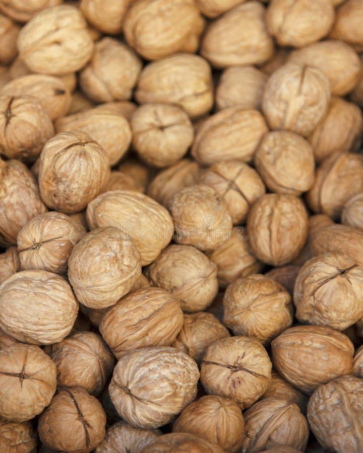 many table walnuts 农业背景 免版税图库摄影