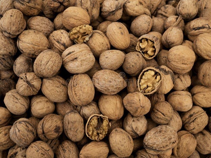 many table walnuts 农业背景 免版税库存图片