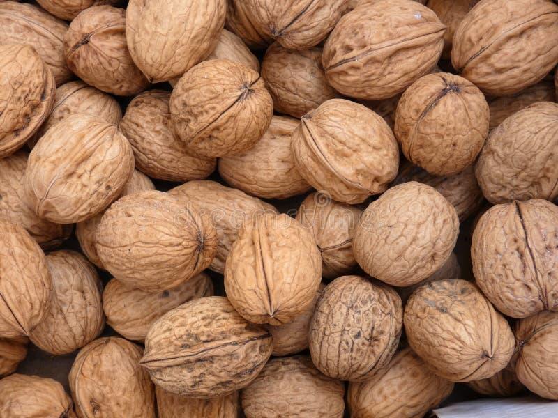 many table walnuts στοκ εικόνες