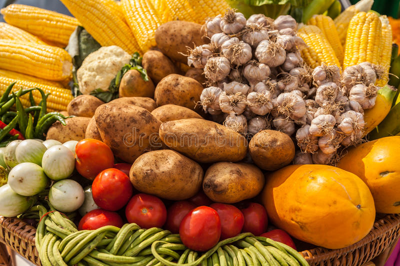 Many types of vegetables stock photos