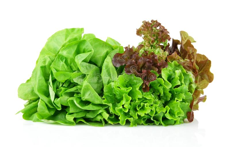 Many varieties of lettuce on white stock photos
