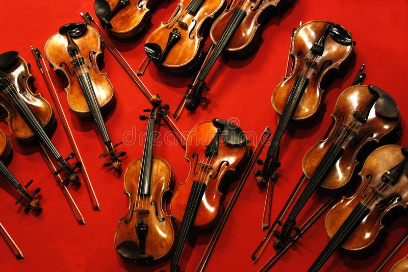 Many violins and bows on red background. stock photo