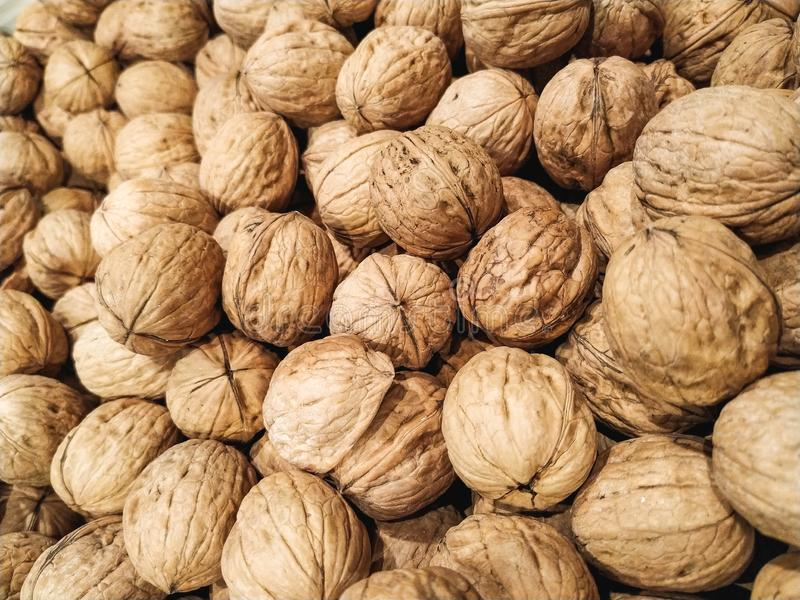Many Walnut, close up, natural product, background stock images