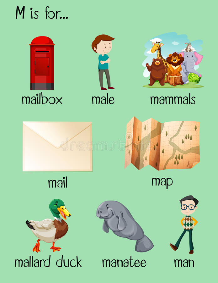 7 letter words starting with m many words begin with letter m stock vector illustration 14715