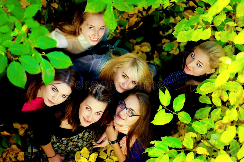 Many young girls in the autumn park. View from top stock photography