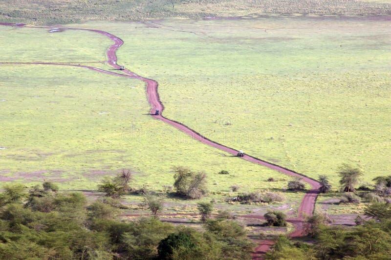 manyara jeziorny park narodowy obrazy royalty free