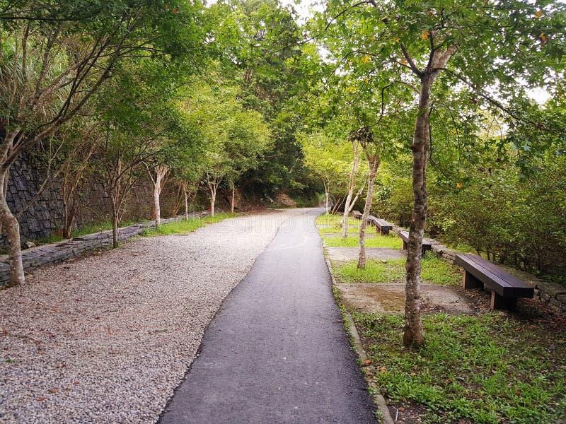 Manyueyuan Forest Park arkivfoto