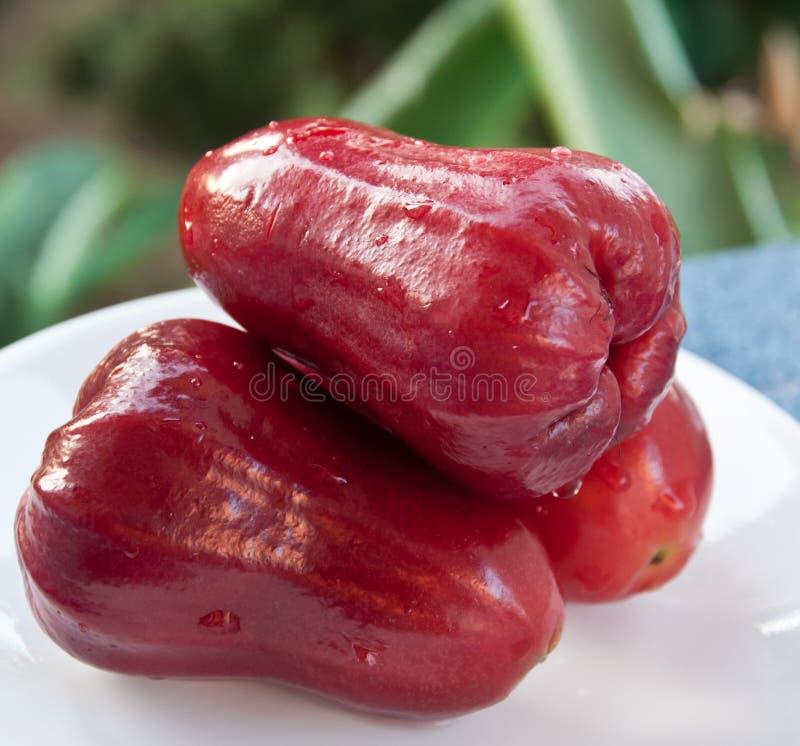 Manzana color de rosa roja fotos de archivo libres de regalías