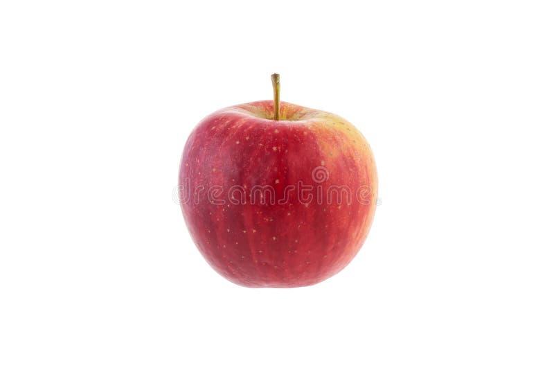 manzana de gala sobre fondo blanco foto de archivo libre de regalías