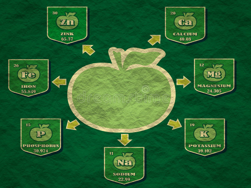 Manzana de los hechos de la nutrición ilustración del vector