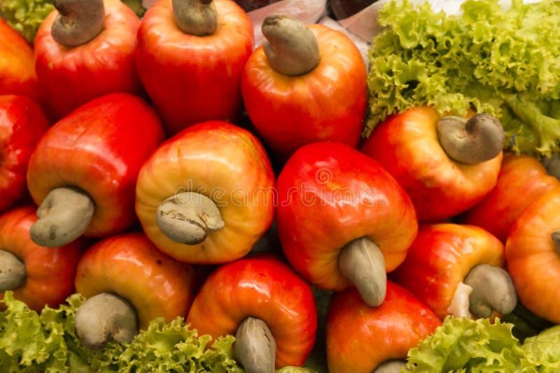 Manzana del anacardo imagen de archivo