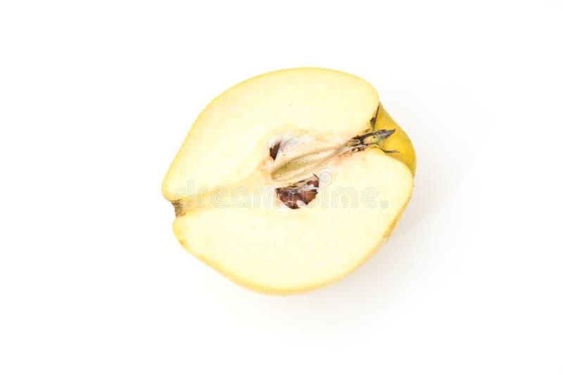 Manzana del membrillo aislada en blanco fotografía de archivo libre de regalías