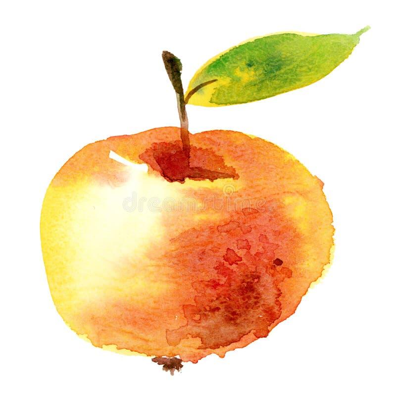 Manzana del Watercolour stock de ilustración