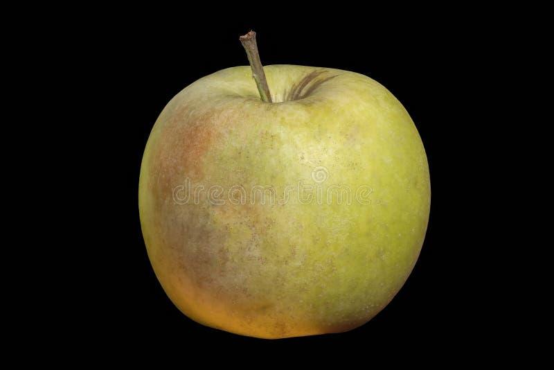 Manzana fresca dulce imagen de archivo