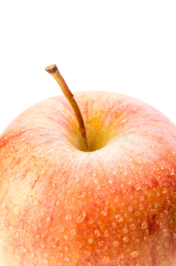 Manzana madura en un fondo blanco fotos de archivo