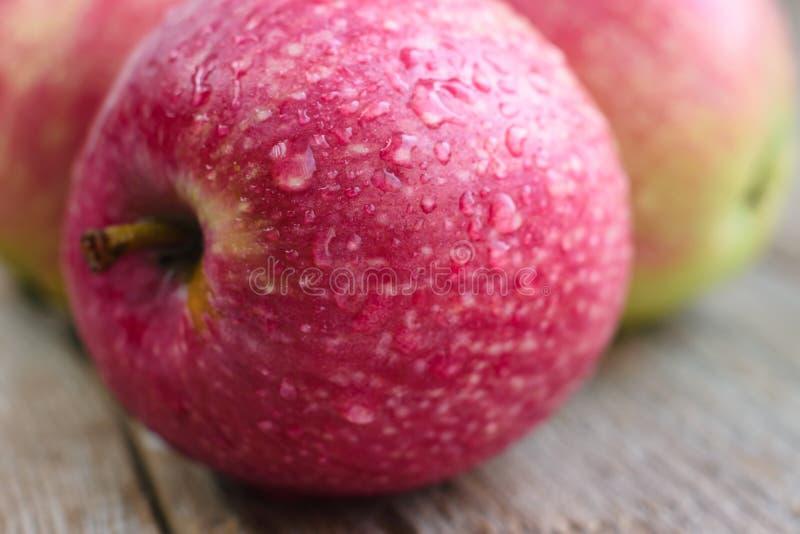 Manzana madura, primer fotografía de archivo