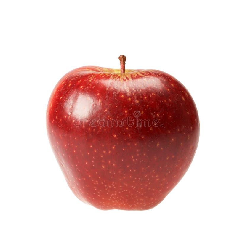 Manzana roja aislada imágenes de archivo libres de regalías
