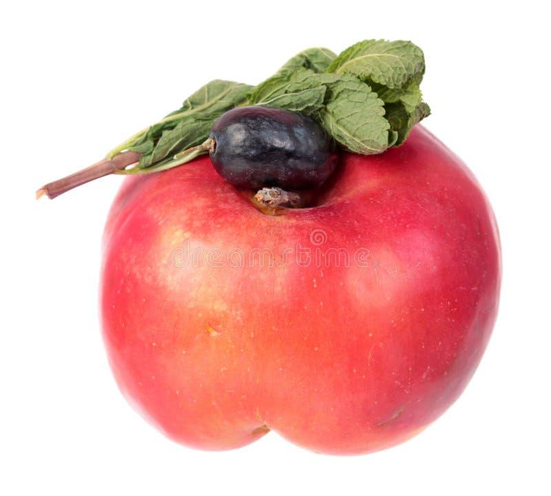 Manzana roja, baya púrpura de la uva y rama de la menta con las hojas verdes frescas aisladas en el fondo blanco Ingredientes par imagen de archivo