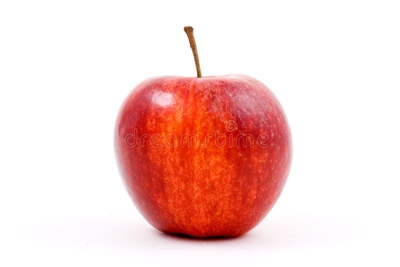 Manzana roja en blanco foto de archivo