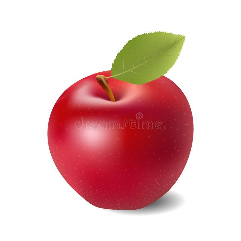 Manzana roja en el fondo blanco imagen de archivo libre de regalías