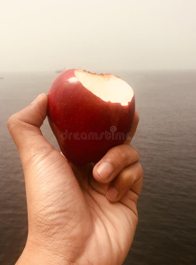 Manzana roja en el mar fotos de archivo