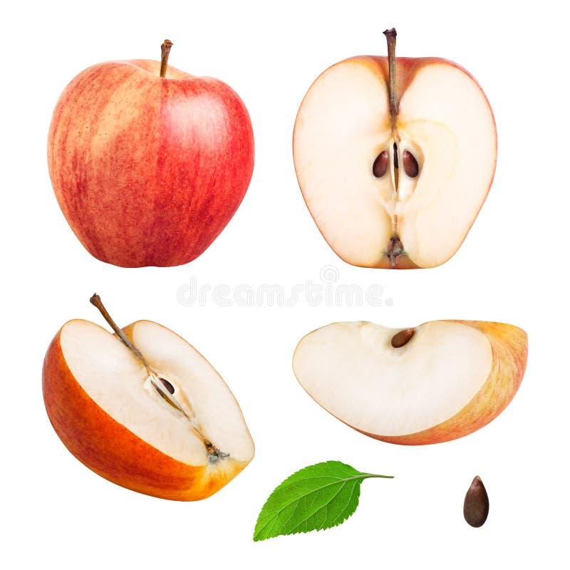 Manzana roja entera y pedazos fijados imagen de archivo libre de regalías