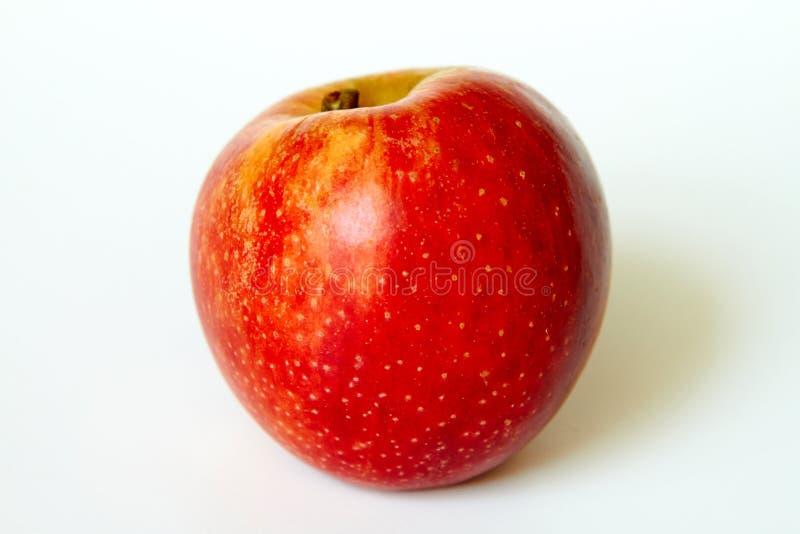 Manzana roja fresca aislada fotografía de archivo libre de regalías