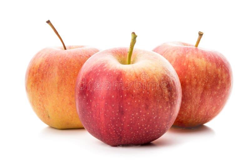 Manzana roja madura aislada en un blanco imagen de archivo libre de regalías