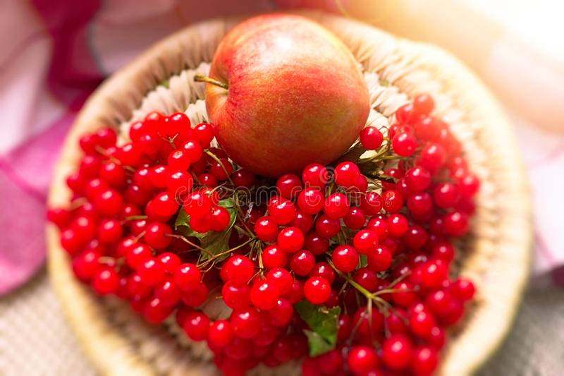Manzana roja y una puntilla del viburnum con las bayas en una placa de mimbre fotos de archivo libres de regalías