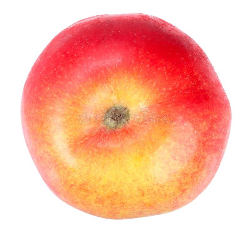 Manzana rojo-amarilla fresca imagenes de archivo