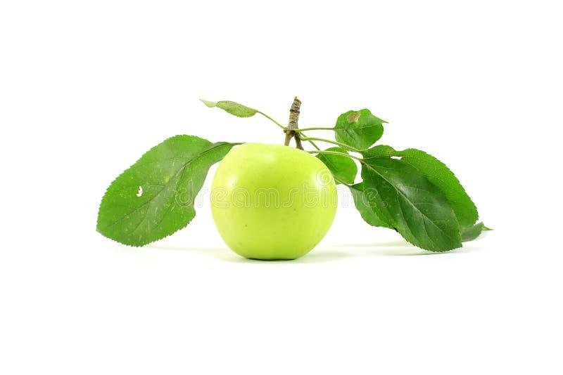 Manzana verde con las hojas imagenes de archivo