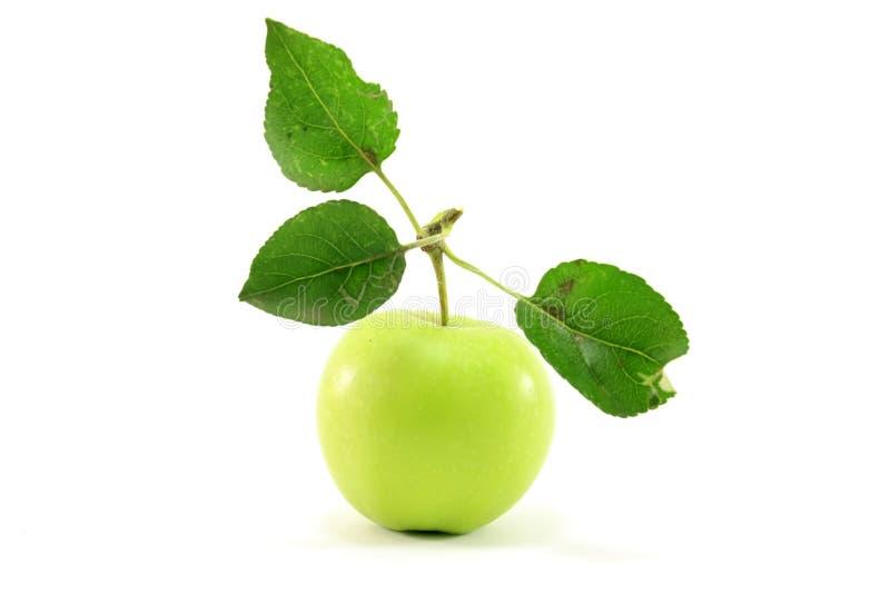 Manzana verde con las hojas foto de archivo libre de regalías