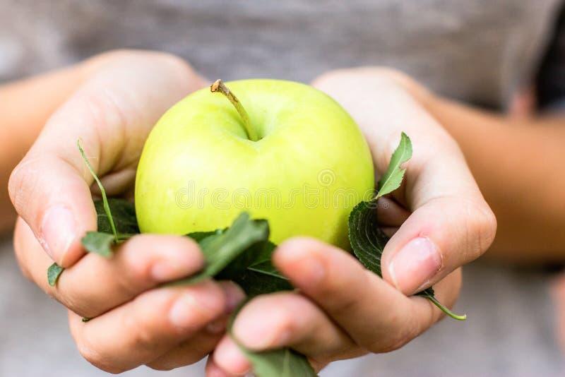 Manzana verde con las hojas en sus manos fotos de archivo