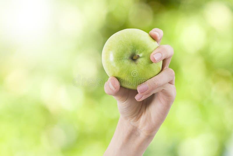 Manzana verde natural imágenes de archivo libres de regalías