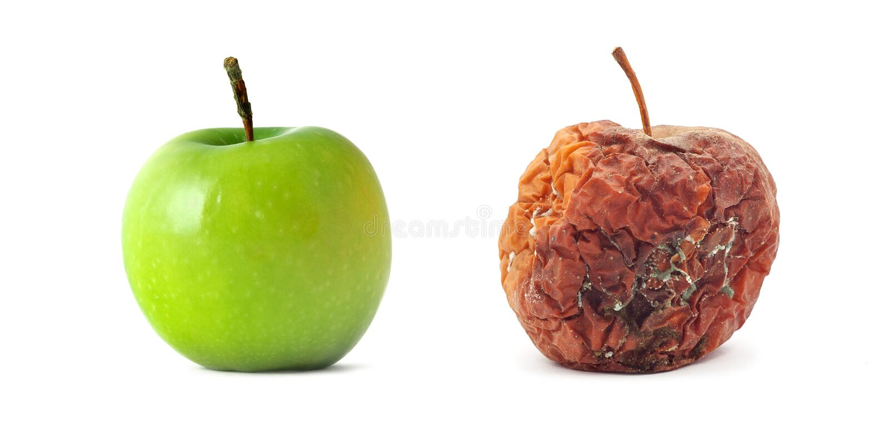 Manzana verde y putrefacta imagen de archivo