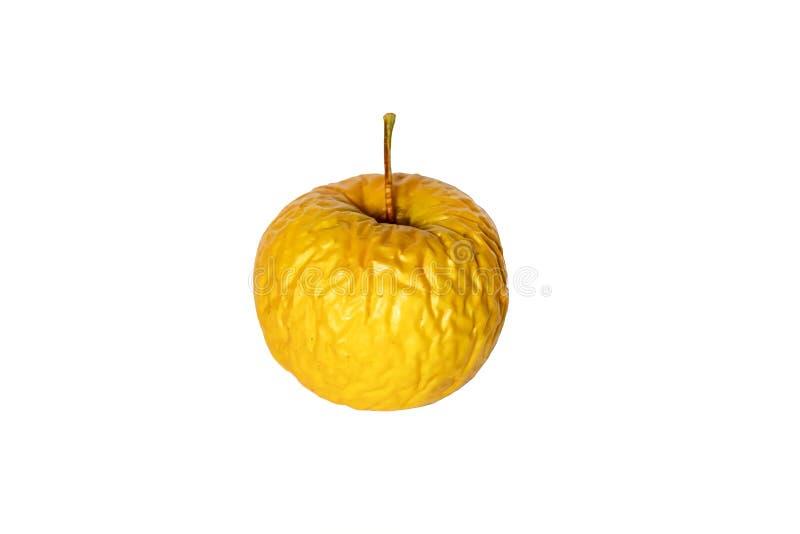 Manzana vieja amarilla arrugada aislada en blanco imagenes de archivo