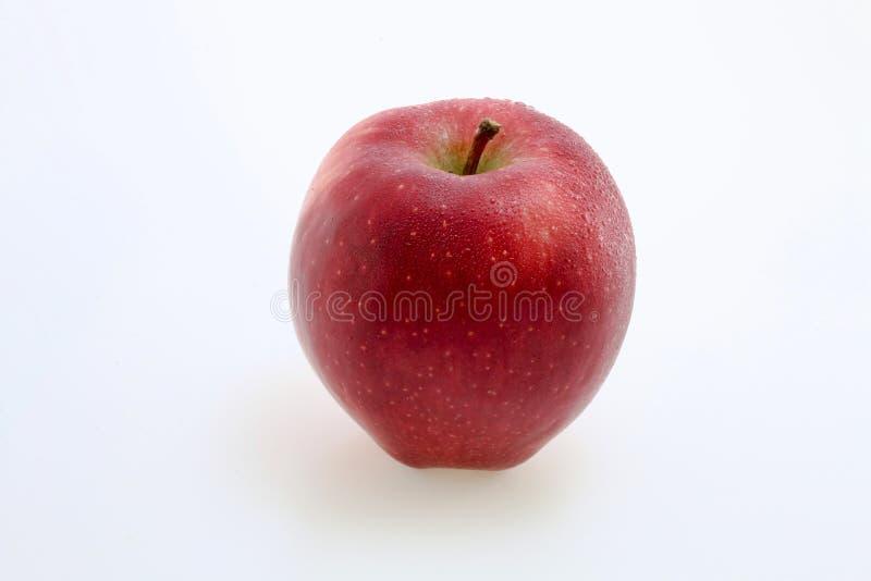 Manzana y primer rojos fotos de archivo