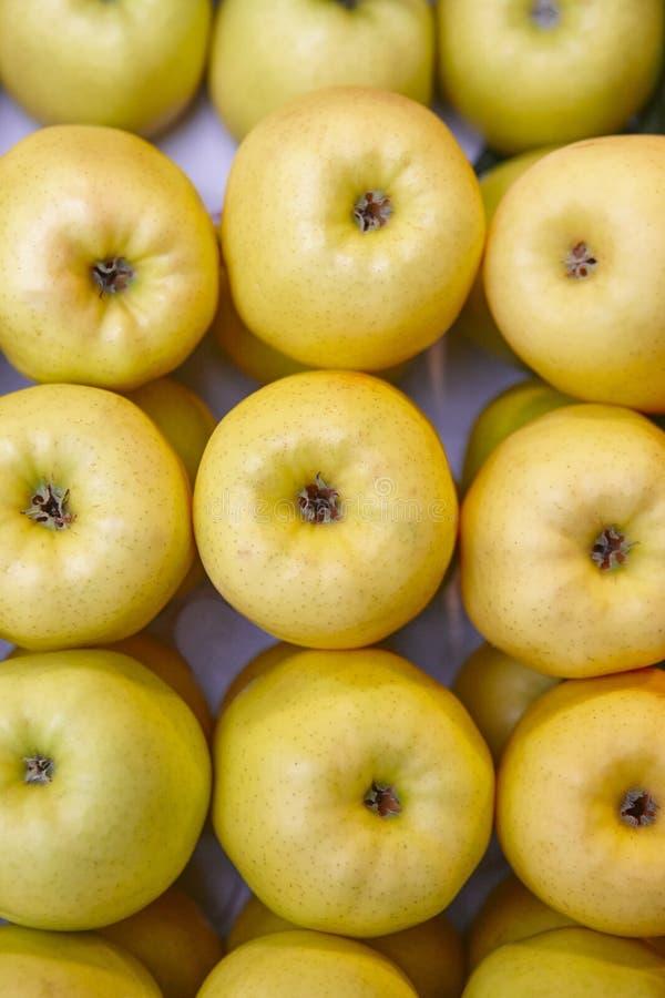 Manzanas amarillas dulces sanas apiladas Fruta fresca Agricultura fotos de archivo