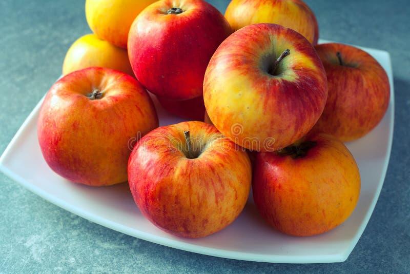 Manzanas coloridas frescas fotos de archivo libres de regalías
