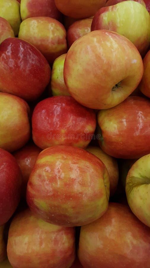 Manzanas de Honeycrisp fotos de archivo libres de regalías