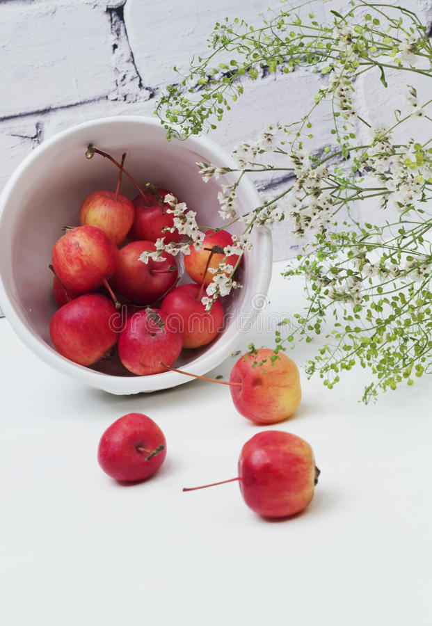 Manzanas de la primavera verde de las flores de paraíso fotos de archivo libres de regalías