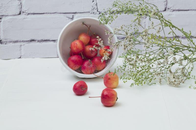 Manzanas de la primavera verde de las flores de paraíso fotografía de archivo libre de regalías