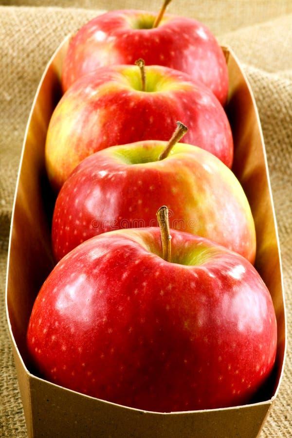 Manzanas de la señora rosada imágenes de archivo libres de regalías