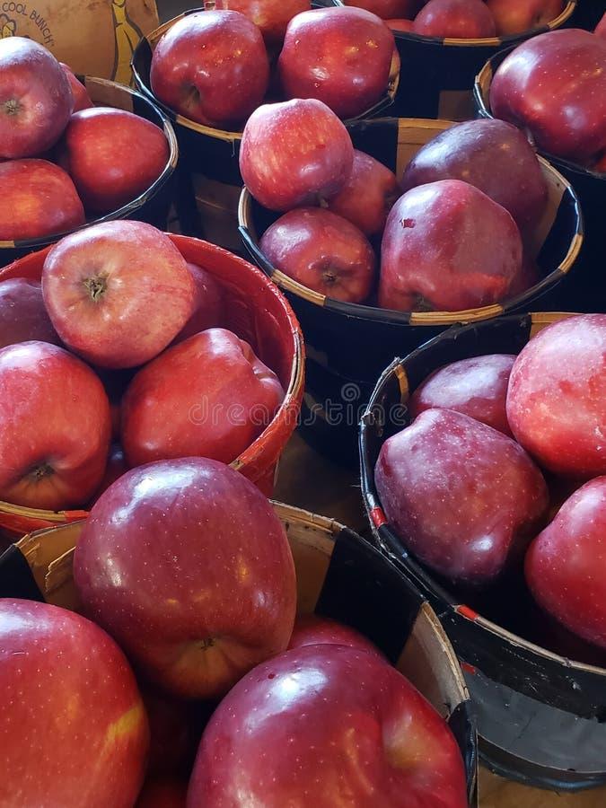 Manzanas de Snowwhites fotografía de archivo